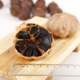 De goede Smaak vergistte Zwart Knoflook de Bollen van 6 Cm (Ingeblikte douane)