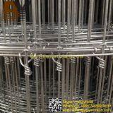 高い共同網の固定結び目のシカの塀の動物の網