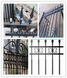 OEM 16FT de Componenten van de Omheining van de Deur van de Schommeling van het Ontwerp van de Poort van het Smeedijzer