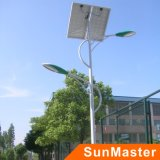 세륨 RoHS Approval High Quality 80W Solar Street Light (STL05D-2*40W)