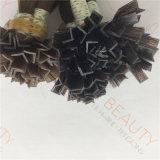 모발 제품은 v 최신 융해 사람의 모발 연장을 기울인다