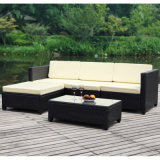 Insiemi neri del sofà della mobilia del giardino del rattan del PE per vendita