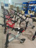 최신 인기 상품 성인을%s 소형 Foldable 산악 자전거 전기 스쿠터 자전거