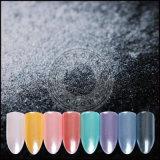 Colorants perlés de produits de beauté de scintillement multicolore de vernis à ongles
