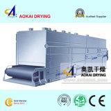 Máquina de secagem para a correia plástica