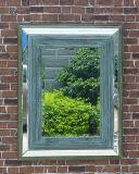 Specchio decorativo del ferro della stanza da bagno con il rivestimento della polvere