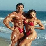 Weißes aufbauendes Steroid-Puder Mestanolone Azetat für den Muskel, der 521-11-9 aufbaut