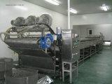 Linha de processamento automática cheia do suco de Apple e de pera na venda