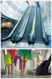 Scala mobile dell'interno esterna pubblica sicura del centro commerciale grande