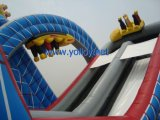 Wild One Roller Coaster Diapositiva inflable con obstáculos