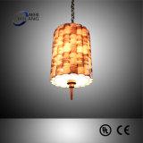 Chinesische Art-Gewebe-Farbton-hängende Lampe für Hotel (B50-300)