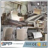 Natur-Marmorsteinspalten für Verkauf des Fabrik-Großhandelspreises