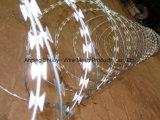 Alambre de púas galvanizado de acero inoxidable de una sola bobina