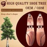 El árbol de madera al por mayor del zapato, ayudante toma los zapatos del cuidado