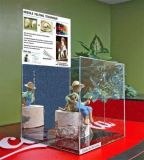 Vitrine acrylique de table de luxe en tailles multiples pour objets de collection avec protection UV