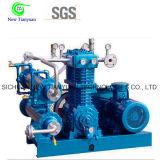 Olefin-Gas-Kompressor-einzelner Zylinder-vertikaler Typ Kompressor