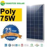 Bester 70watt 75W Sonnenkollektor-Preis der China-Fabrik-