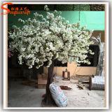 5f самонаводят вал цветения вишни стеклоткани декора искусственний