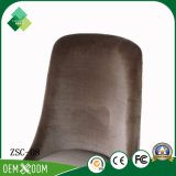온라인으로 너도밤나무 거실 의자 판매의 새로운 디자인 (ZSC-08)