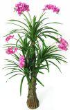 Piante conservate in vaso dei bonsai artificiali