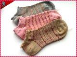 La mejor señora Socks Cotton del bulto de la calidad