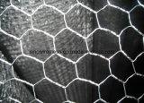 Горячее окунутое гальванизированное шестиугольное плетение с низкоуглеродистой сталью