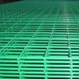 Rete metallica saldata rivestita di plastica del PVC per la fabbricazione della presa del granchio