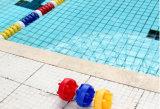 Les meilleures relingues de flotteurs de piscine de qualité/les lignes de voie piscine/piscine