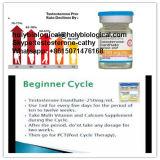 Gesundes intramuskulöses Hormon-Steroid Prüfung Enanthate pulverisiert Testosteron Enanthate