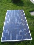 Comitato solare termico poco costoso di prezzi 310W il poli