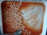 Законсервированные белые фасоли почки с томатным соусом для еды