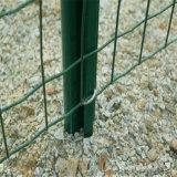 Загородка зеленой загородки PVC Coated Голландии сотка