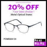 Het Optische Frame van het metaal met het Kunstwerk van het Metaal