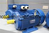moteur électrique 415V triphasé de l'arbre 19mm de 0.55kw 0.75HP 1400rpm