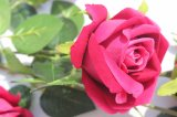 Künstliche Rose für Hauptdekoration-Fälschungs-Blumen für Hochzeits-Dekoration