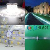 indicatore luminoso Cuttable della decorazione di natale della striscia di bianco LED di 60LED IP67 230V