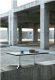Moderner erstklassiger Tee-Tisch mit dem Edelstahl-Bein (CT-V5)