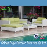 Migliori prodotti di vendita del sofà della mobilia stabilita moderna del salone