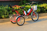 Гибридный электрический Bike 250With350W Trike с местом младенца