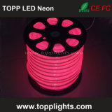 230V 120V 24V 12V LED Neon Rope Light