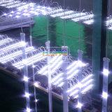 Bande rigide polychrome du Sidelight DEL de haute énergie de 48 PCS
