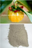 Extrait 100% de gomme-gutte de Garcinia de l'acide 60% de Hydroxycitric de perte de poids normal