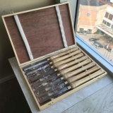 Strumenti per tornitura di legno impostati per uso della macchina e lo scalpello di scultura di legno per gli strumenti della mano