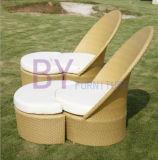 Il rattan esterno del PE presiede la mobilia del giardino di svago