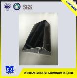 Extrusion en aluminium pour l'échelle a