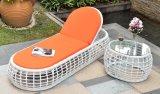 Мебель ротанга стенда пляжа салона плавательного бассеина с валиком