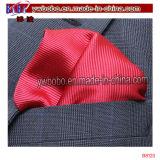 Écharpes en microfibre de mode pour hommes (B8117)