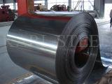 410/430 bobina del acero inoxidable del borde del molino de Foshan