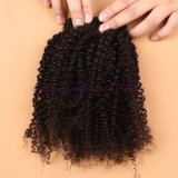 capelli ricci crespi mongoli del grado 8A con i gruppi dei capelli umani della chiusura con la chiusura del merletto nessun Tangle&Shedding