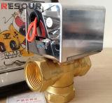 Resour моторизовало клапан трехходовой, двухсторонне, 220V/380V